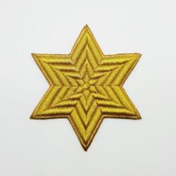 APLICACIÓN DORADA (10x10cm)